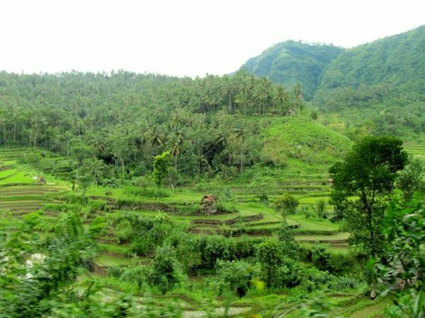 Unesco Bali