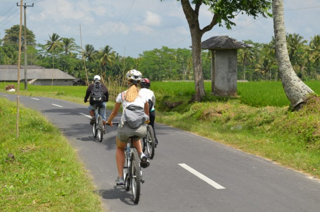 what to do in ubud - cycling