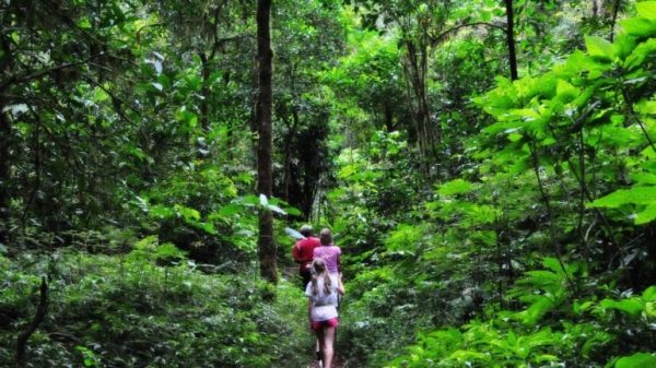 Bali Hiking Trails