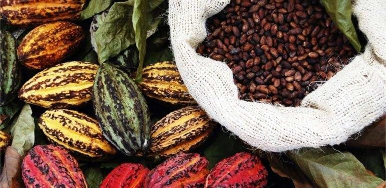 bean to bar - Bali Chocolate