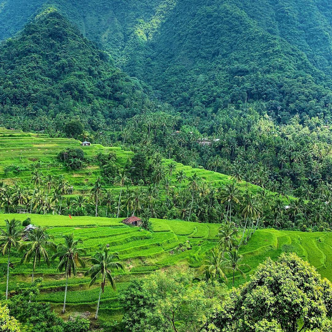 reasons to travel to the north of Bali